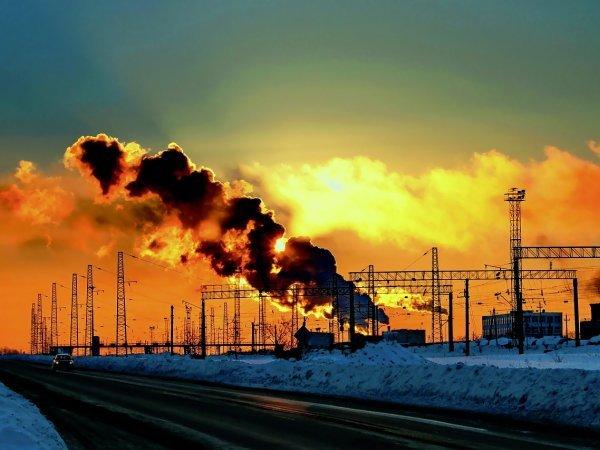 Штрафы в области охраны окружающей среды