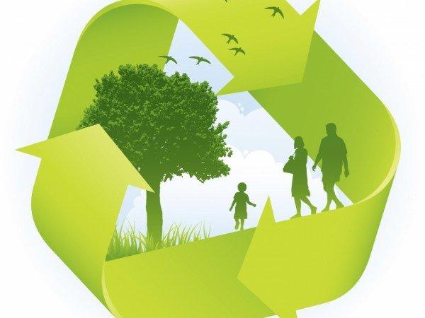 Виды экологической экспертизы