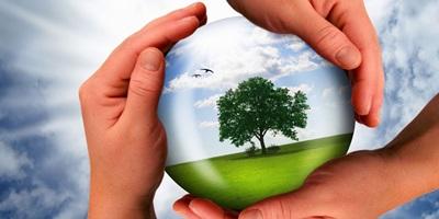 Помощь в экологических проверках