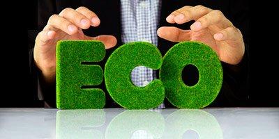 Экологическая документация для предприятия