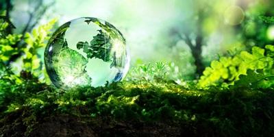 Заказать экологический аудит и проверку