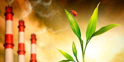 Заказ экологического паспорта