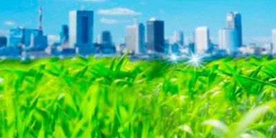 Экспертиза экологической документации