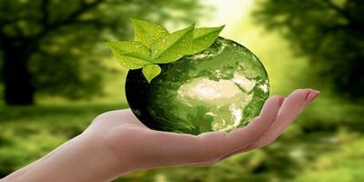 Заказ экологического аудита в Краснодаре