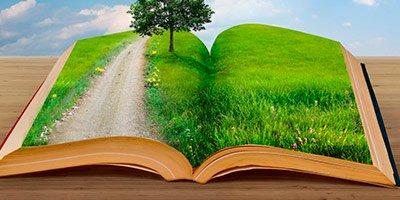 Экологическая проектная документация